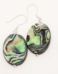Stunning Paua Shell and Sterling Silver earrings.